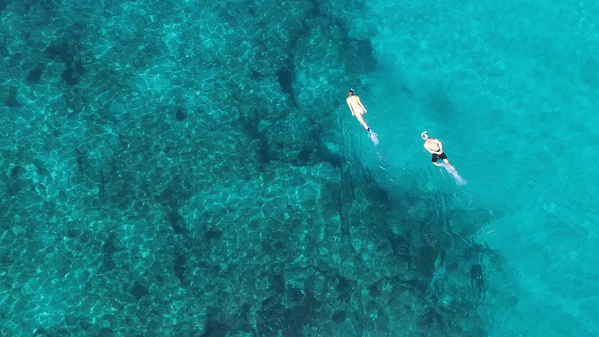 snorkelling-two-mile-reef-copy