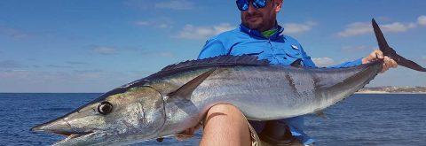 Sailfish and Wahoo Fishing Charters